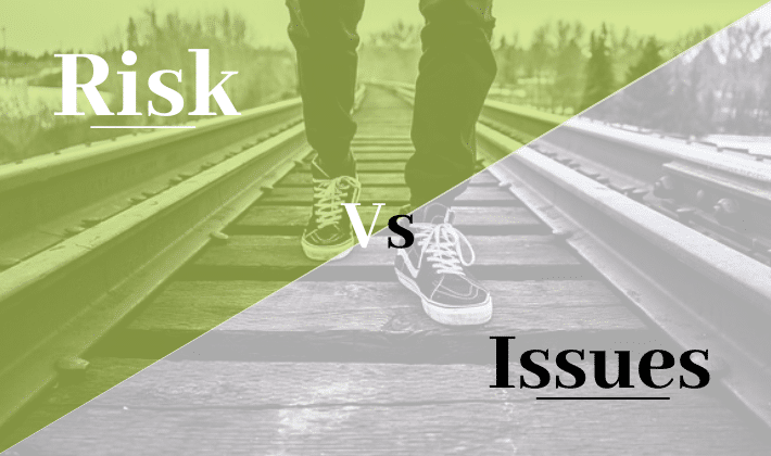 risks and issues in project management